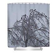 Cold Landing Pt 2 Shower Curtain