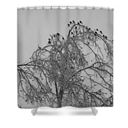 Cold Landing Pt3 Shower Curtain
