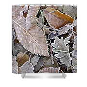 Cold Leaves Shower Curtain