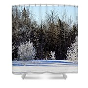 Cold Magic Shower Curtain