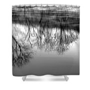 Cold Reflection Shower Curtain