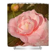 Cold Swirled Camellia Shower Curtain