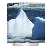 Cold Visitors  Shower Curtain