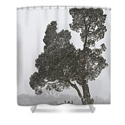 Cold War Shower Curtain