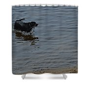 Cold Water Fetch Shower Curtain