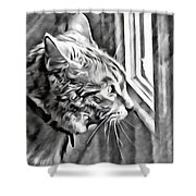 Cole Kitty Watchful Shower Curtain