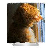 Colekitty On The Lookout Shower Curtain