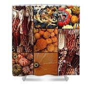 Collage - Corn - Pumpkins - Gourds - Elena Yakubovich Shower Curtain