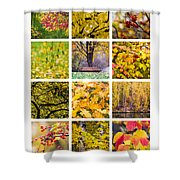 Collage October - Featured 3 Shower Curtain