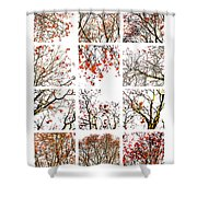 Collage The Beauty Of Rowan Shower Curtain