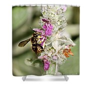 Collecting Nectar Shower Curtain