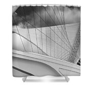 Collector Of Art Shower Curtain by Jack Zulli
