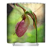Colleen Shower Curtain