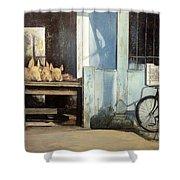 Colmado-havana Shower Curtain