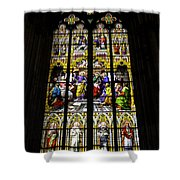 Cologne Cathedral Stained Glass Window Of St Peter Shower Curtain