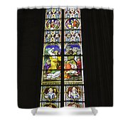 Cologne Cathedral Stained Glass Window Of St. Stephen Shower Curtain