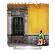 Colonial Puno Shower Curtain