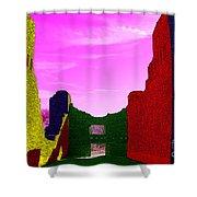 Color At Quarai  Shower Curtain