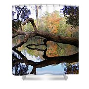 Color Beyond The Branches Shower Curtain