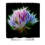 Color Burst Shower Curtain by Adam Romanowicz