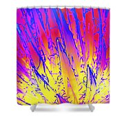 Color Burst Agave Shower Curtain