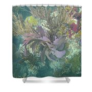 Color Corals Shower Curtain by Adam Jewell