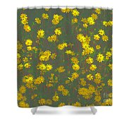 Color Flower Wall Shower Curtain
