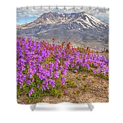 Color From Chaos - Mount St. Helens Shower Curtain