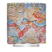 Color Hieroglyph Shower Curtain