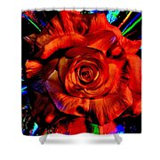 Color Intensive Rose Shower Curtain