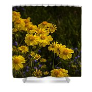 Color Me Yellow  Shower Curtain