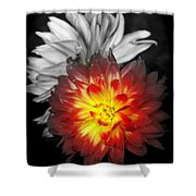 Color Of Life Shower Curtain by Karen Wiles