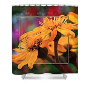 Color Pizzaz With Collaged Textures Shower Curtain