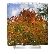 Color To The Sky Shower Curtain