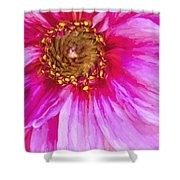 Color Wow Shower Curtain