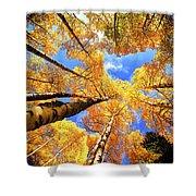 Colorado Autumn Sky Shower Curtain