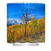 Colorado Fall Foliage Back Country View Shower Curtain