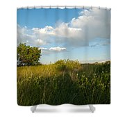 Colorado June Evening Landscape Shower Curtain