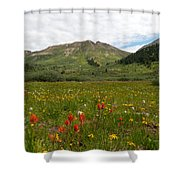 Colorado Meadow And Mountain Landscape Shower Curtain