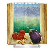 Colorado Mountain View Shower Curtain