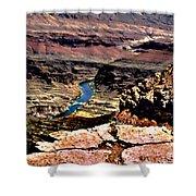 Colorado Rapids Grand Canyon Shower Curtain