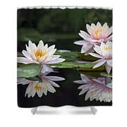 Colorado Reflections Shower Curtain