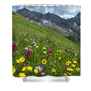 Colorado Wildflowers And Mountains Shower Curtain by Cascade Colors