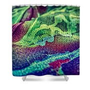 Colored 2 Shower Curtain