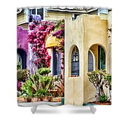 Colored Cottages By Diana Sainz Shower Curtain