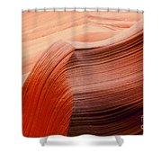 Colored Curves Shower Curtain