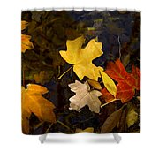 Colored Floaters Shower Curtain
