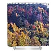 Colored Landscape Shower Curtain
