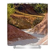 Colored Pathway Shower Curtain