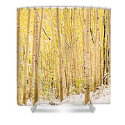 Colored Pencils Shower Curtain